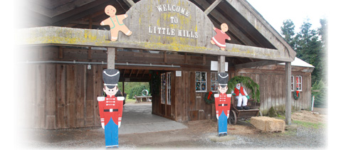 Little Hills Barn